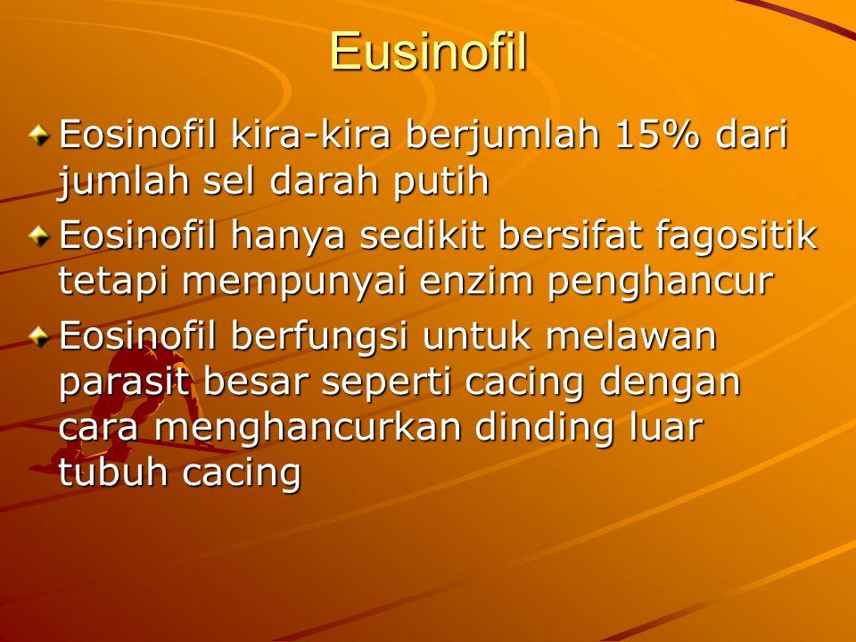 Eusinofil Eosinofil kira-kira berjumlah 15% dari jumlah sel darah putih.