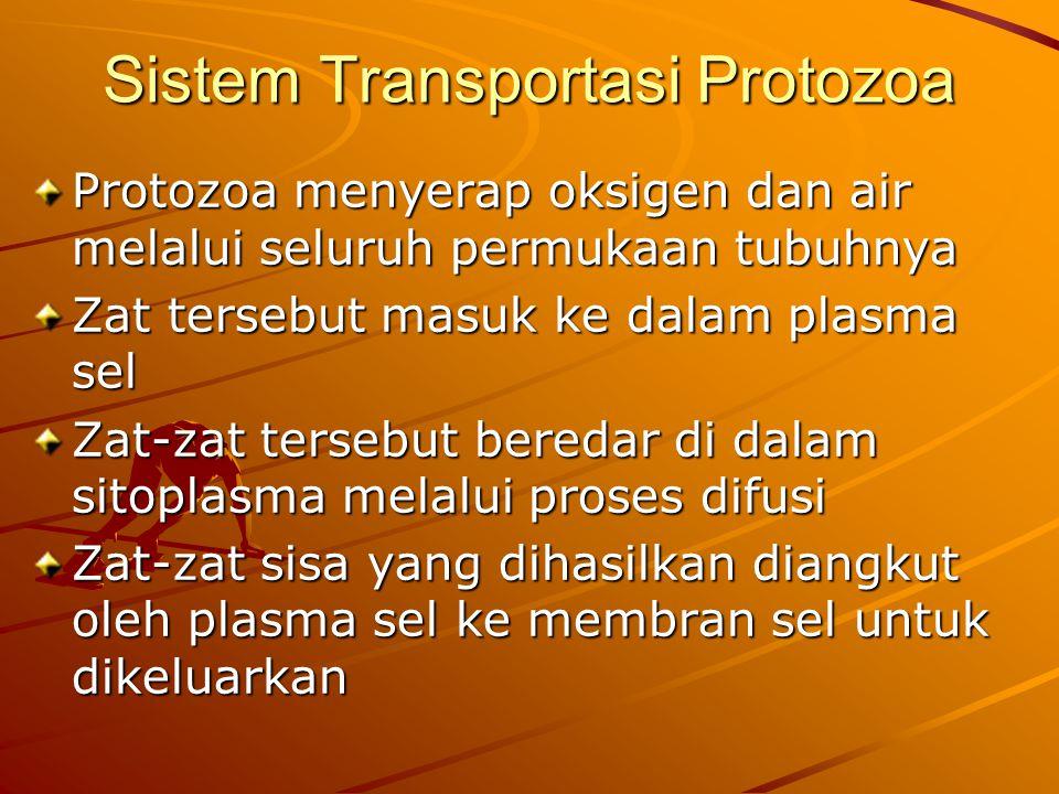 Sistem Transportasi Protozoa