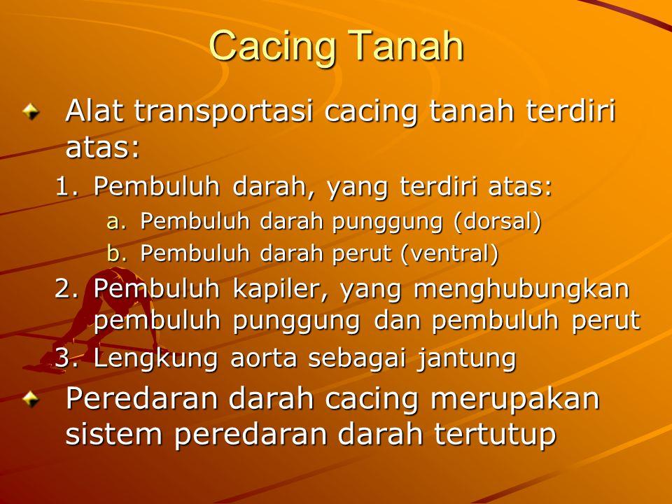 Cacing Tanah Alat transportasi cacing tanah terdiri atas:
