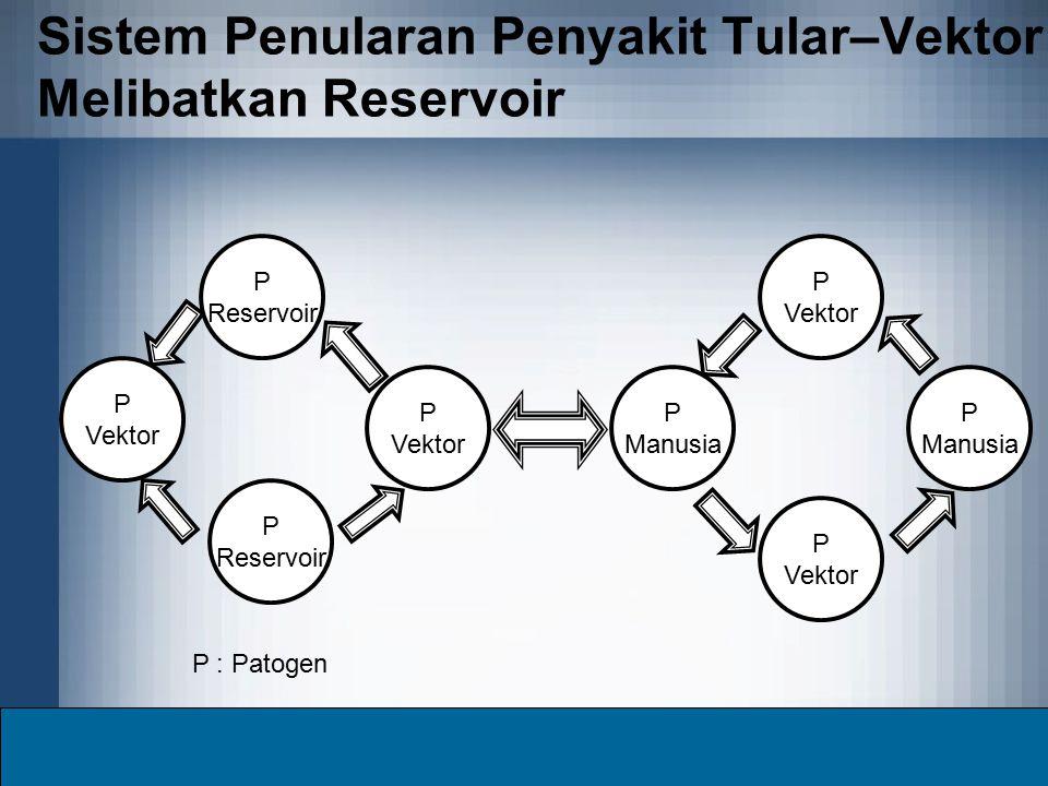 Sistem Penularan Penyakit Tular–Vektor Melibatkan Reservoir