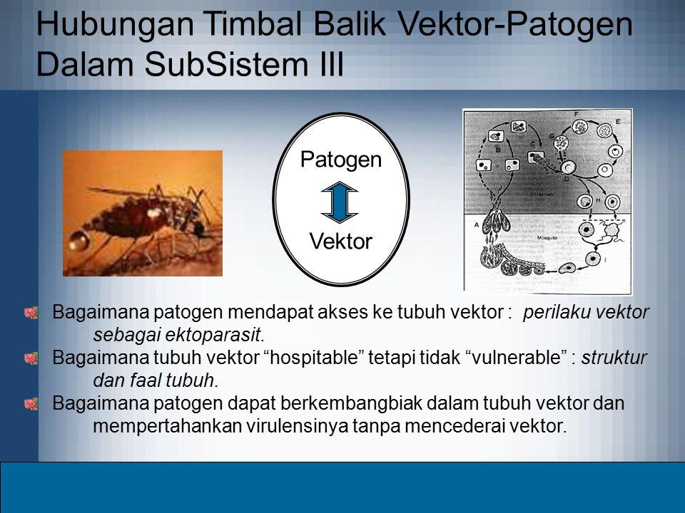 Hubungan Timbal Balik Vektor-Patogen Dalam SubSistem III