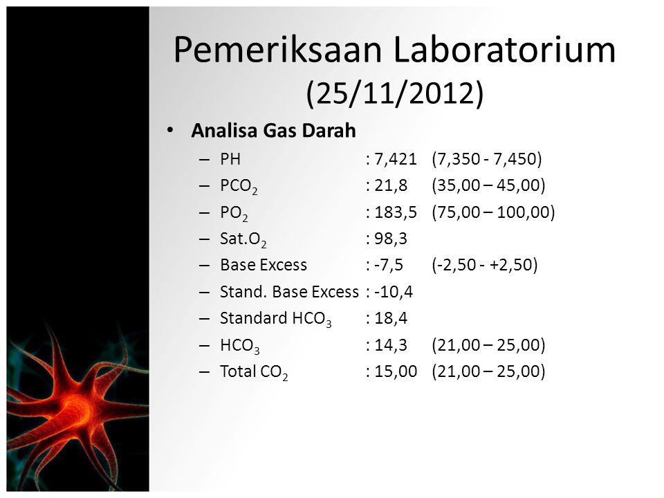Pemeriksaan Laboratorium (25/11/2012)