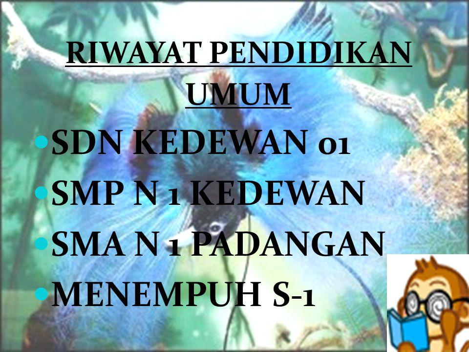 SDN KEDEWAN 01 SMP N 1 KEDEWAN SMA N 1 PADANGAN MENEMPUH S-1