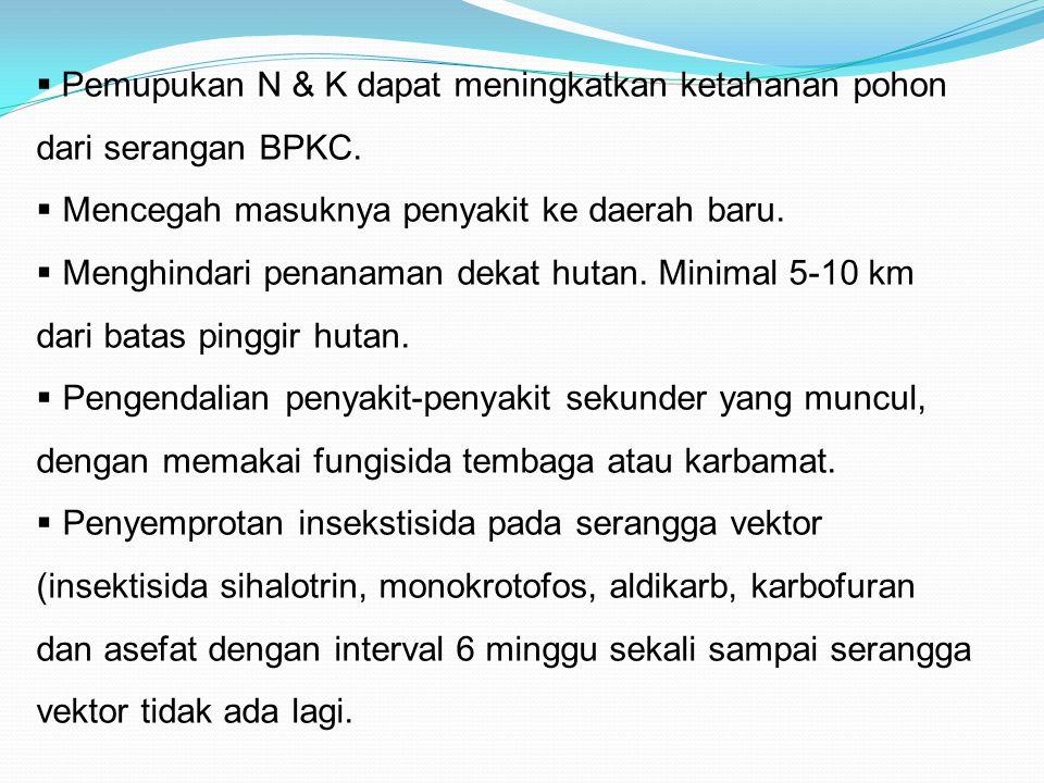Pemupukan N & K dapat meningkatkan ketahanan pohon dari serangan BPKC.