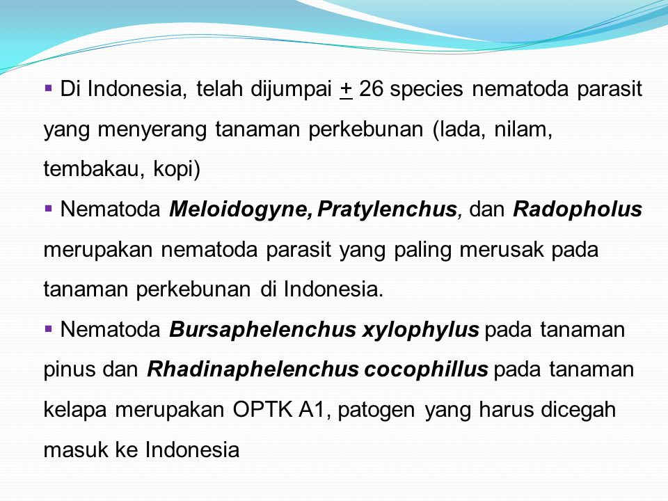 Di Indonesia, telah dijumpai + 26 species nematoda parasit yang menyerang tanaman perkebunan (lada, nilam, tembakau, kopi)