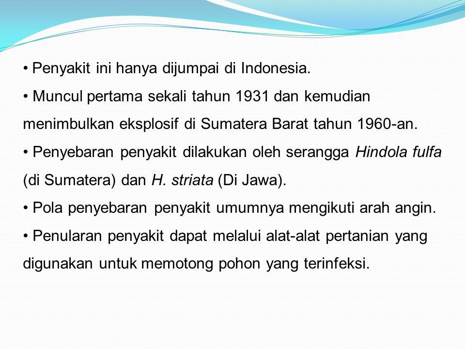 Penyakit ini hanya dijumpai di Indonesia.