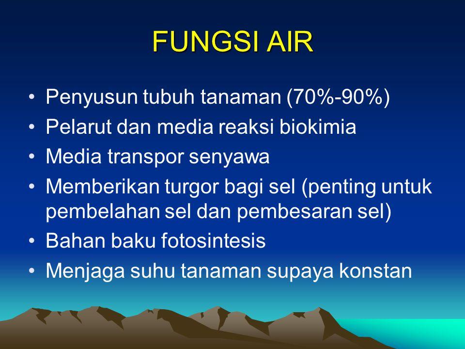 FUNGSI AIR Penyusun tubuh tanaman (70%-90%)