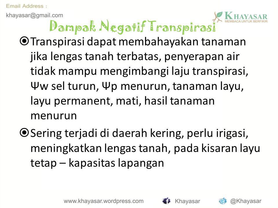 Dampak Negatif Transpirasi
