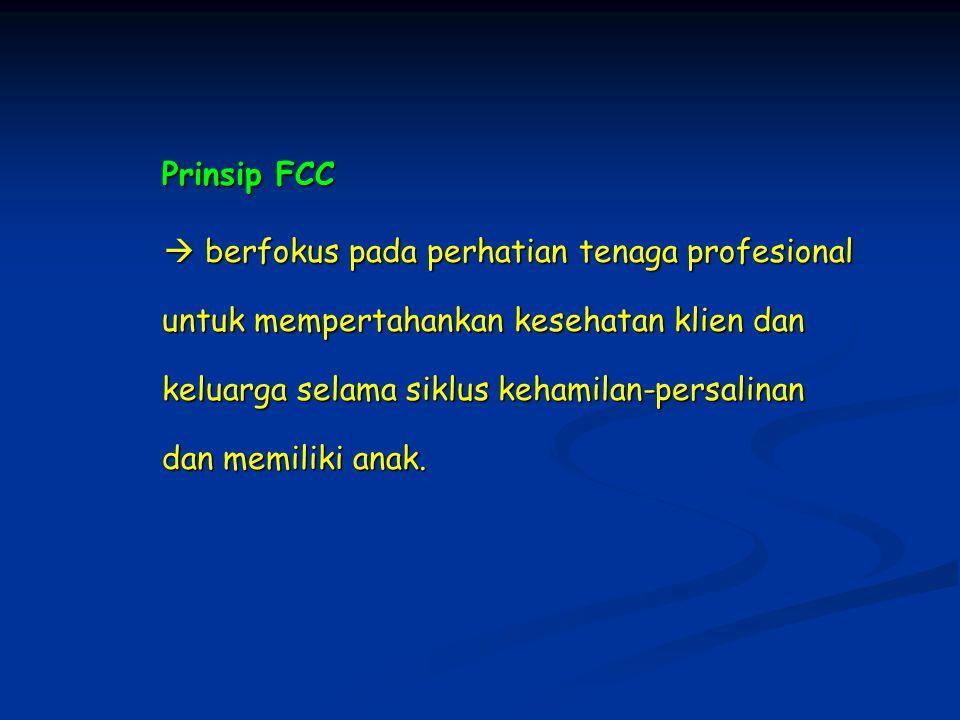 Prinsip FCC