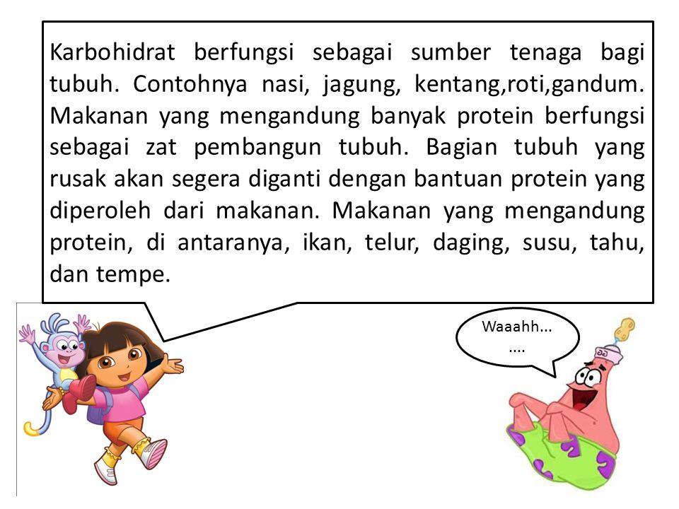 Karbohidrat berfungsi sebagai sumber tenaga bagi tubuh
