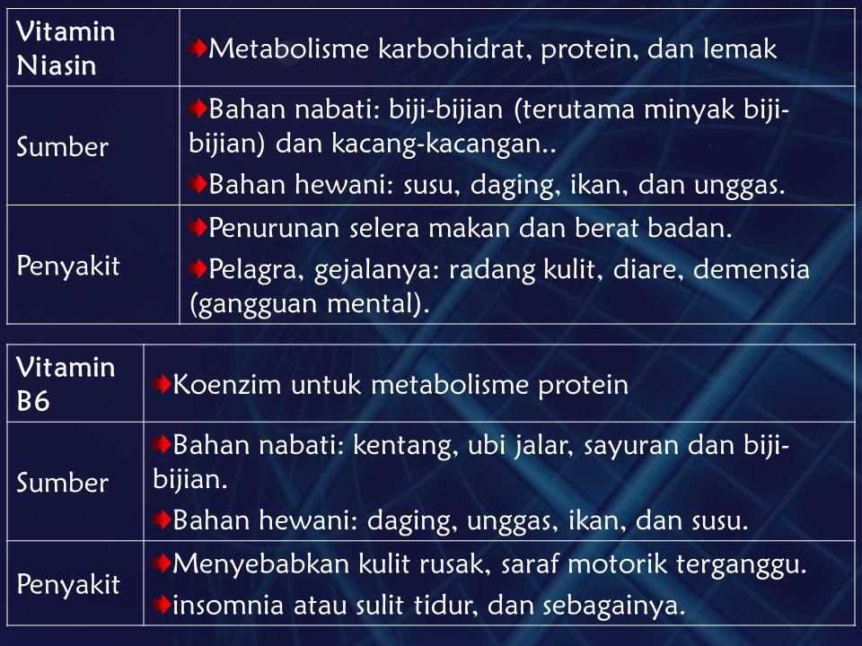 Vitamin Niasin Metabolisme karbohidrat, protein, dan lemak. Sumber. Bahan nabati: biji-bijian (terutama minyak biji-bijian) dan kacang-kacangan..