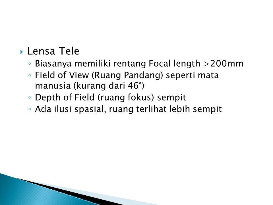 Lensa Tele Biasanya memiliki rentang Focal length >200mm