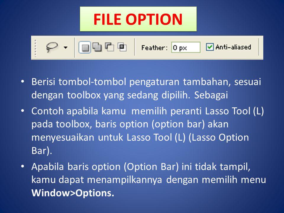 FILE OPTION Berisi tombol-tombol pengaturan tambahan, sesuai dengan toolbox yang sedang dipilih. Sebagai.