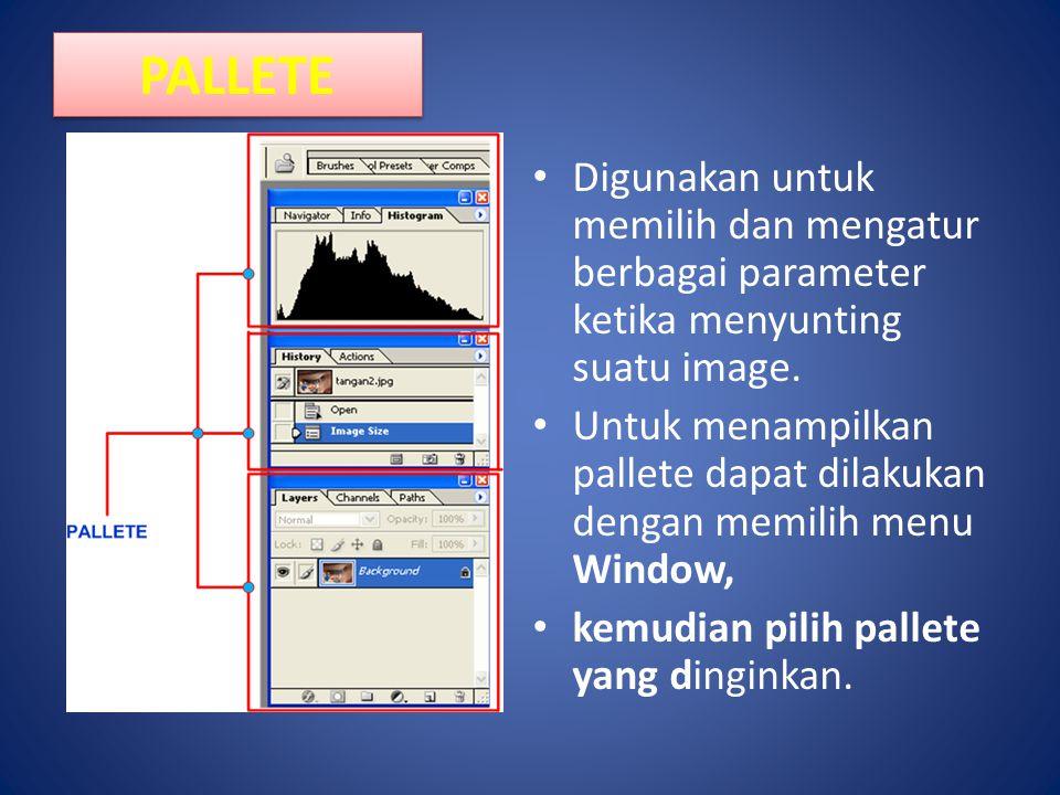 PALLETE Digunakan untuk memilih dan mengatur berbagai parameter ketika menyunting suatu image.