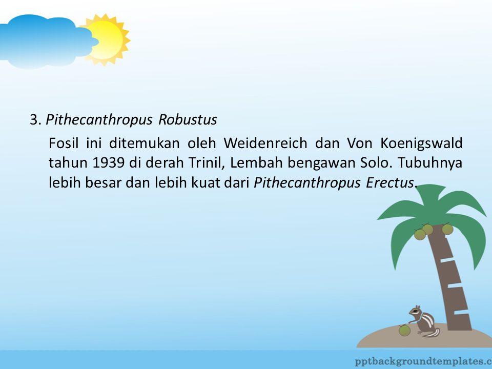 3. Pithecanthropus Robustus