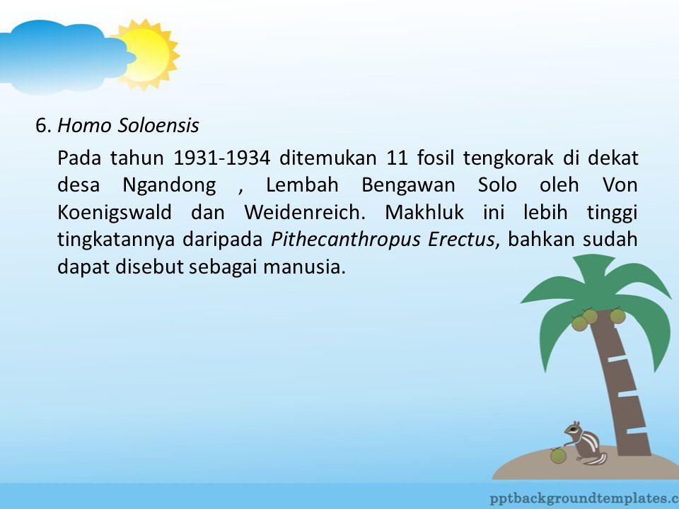 6. Homo Soloensis