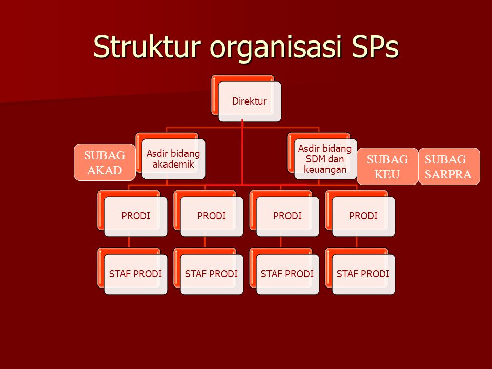 Struktur organisasi SPs