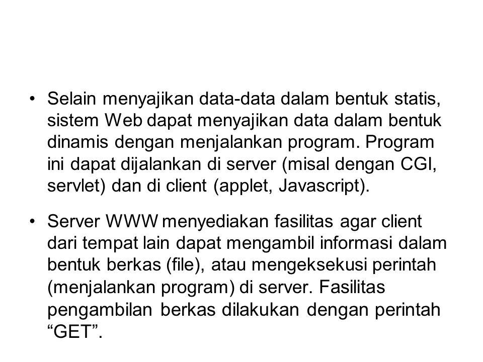 Selain menyajikan data-data dalam bentuk statis, sistem Web dapat menyajikan data dalam bentuk dinamis dengan menjalankan program. Program ini dapat dijalankan di server (misal dengan CGI, servlet) dan di client (applet, Javascript).