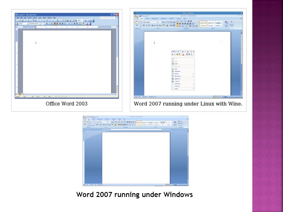 Word 2007 running under Windows