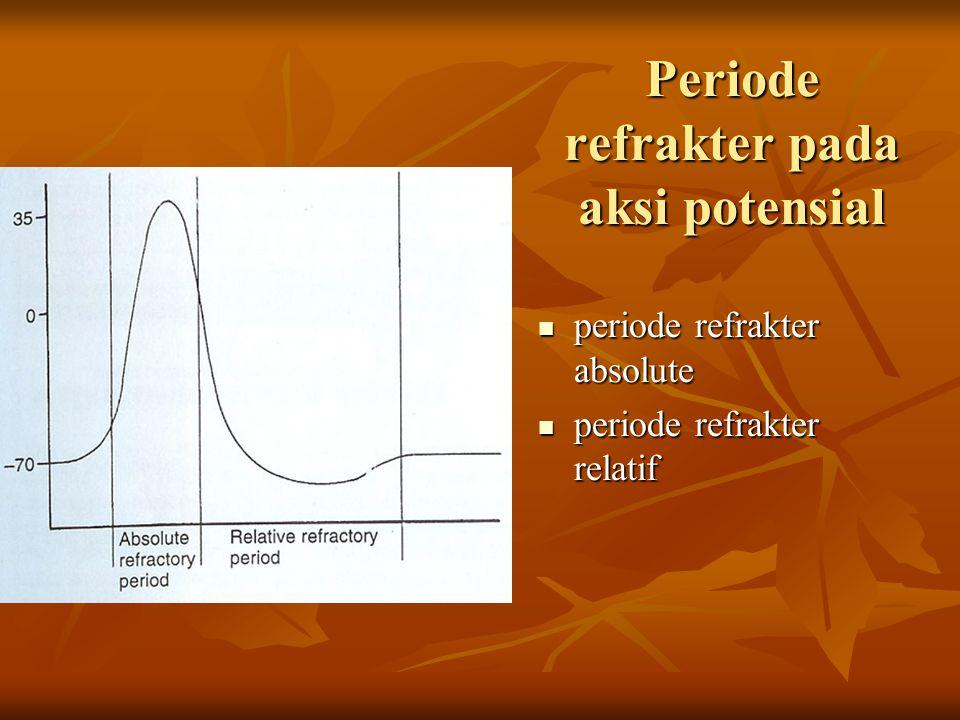 Periode refrakter pada aksi potensial
