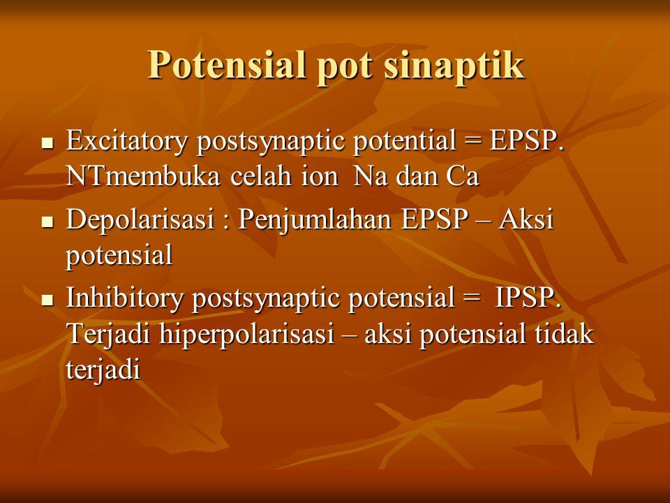 Potensial pot sinaptik