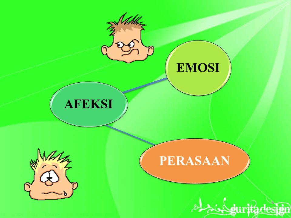 AFEKSI EMOSI PERASAAN 3