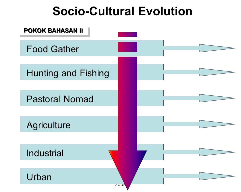 Socio-Cultural Evolution