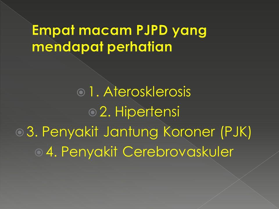 Empat macam PJPD yang mendapat perhatian