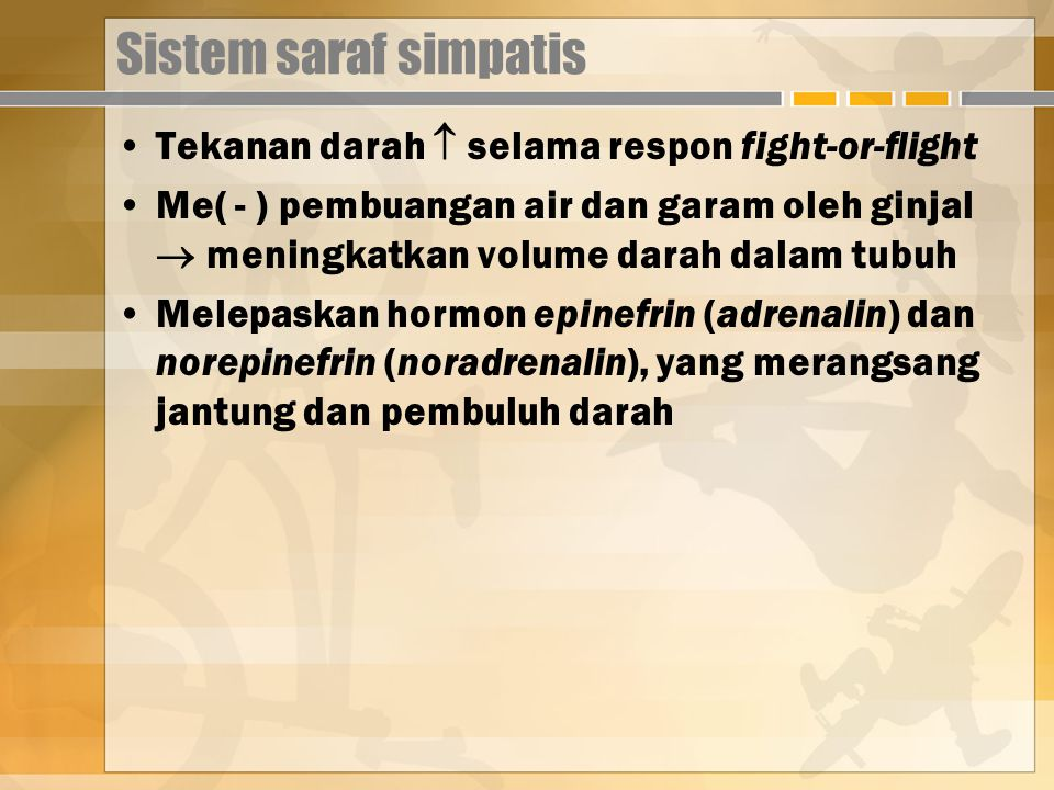 Sistem saraf simpatis Tekanan darah  selama respon fight-or-flight