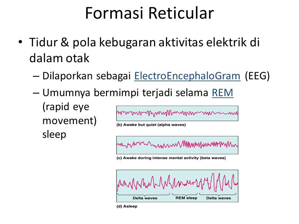 Formasi Reticular Tidur & pola kebugaran aktivitas elektrik di dalam otak. Dilaporkan sebagai ElectroEncephaloGram (EEG)