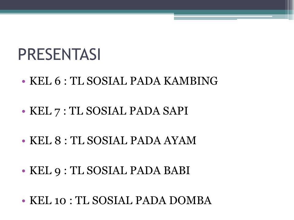 PRESENTASI KEL 6 : TL SOSIAL PADA KAMBING KEL 7 : TL SOSIAL PADA SAPI