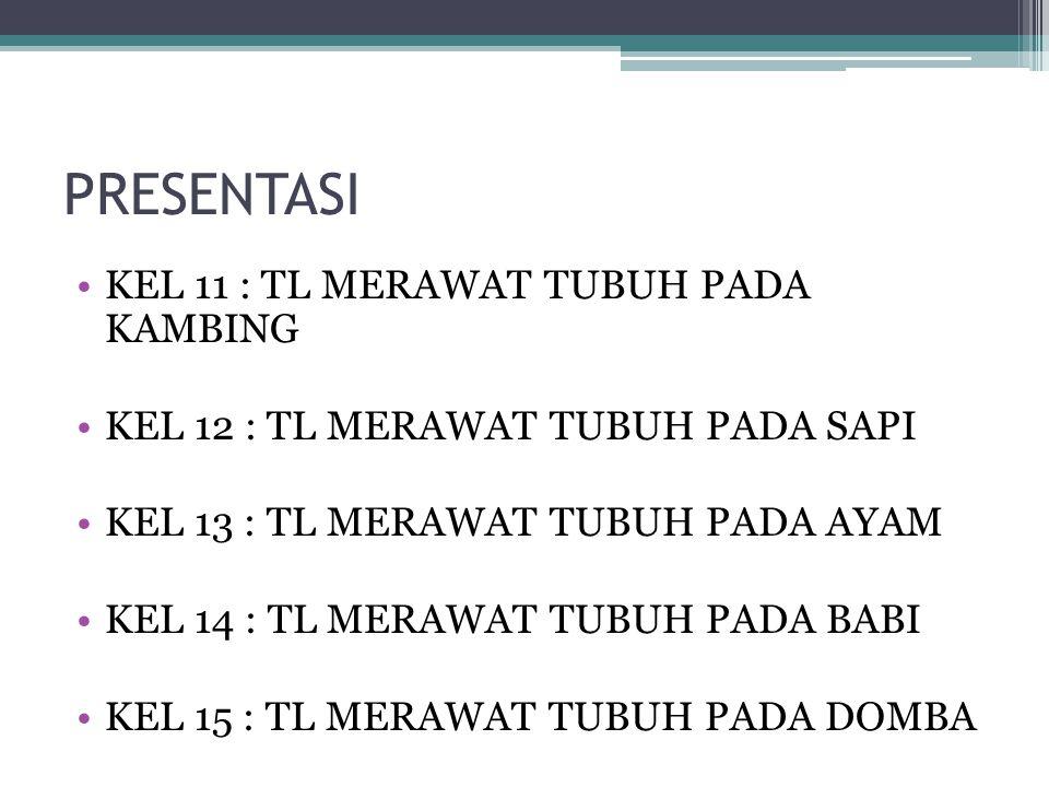 PRESENTASI KEL 11 : TL MERAWAT TUBUH PADA KAMBING