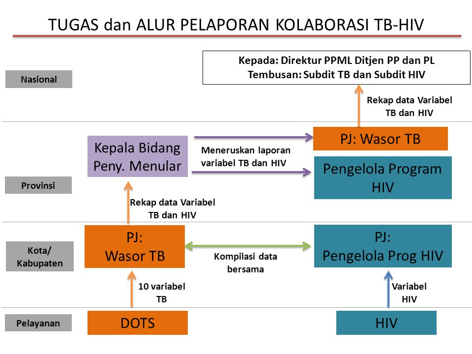 TUGAS dan ALUR PELAPORAN KOLABORASI TB-HIV