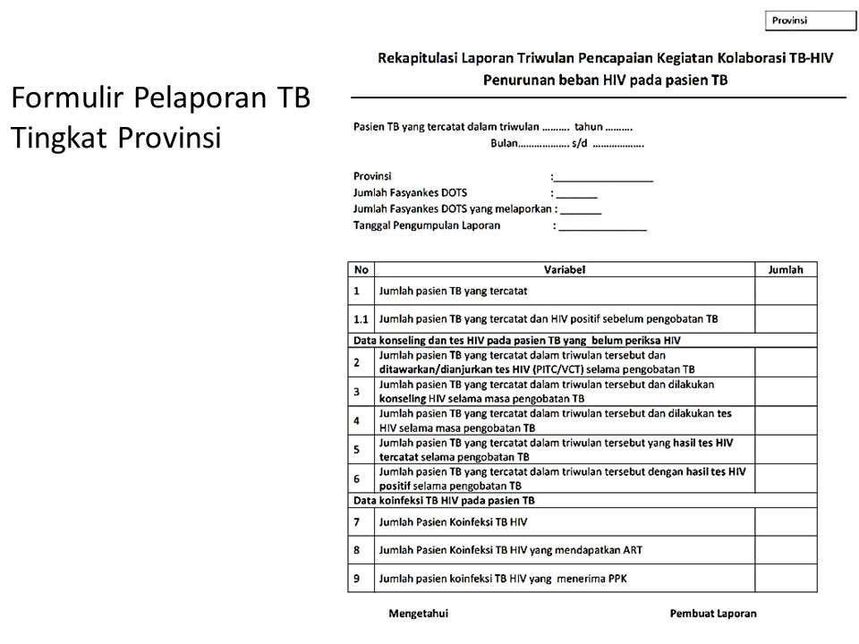 Formulir Pelaporan TB Tingkat Provinsi
