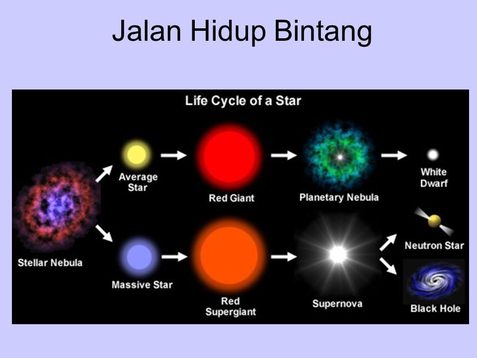 Jalan Hidup Bintang