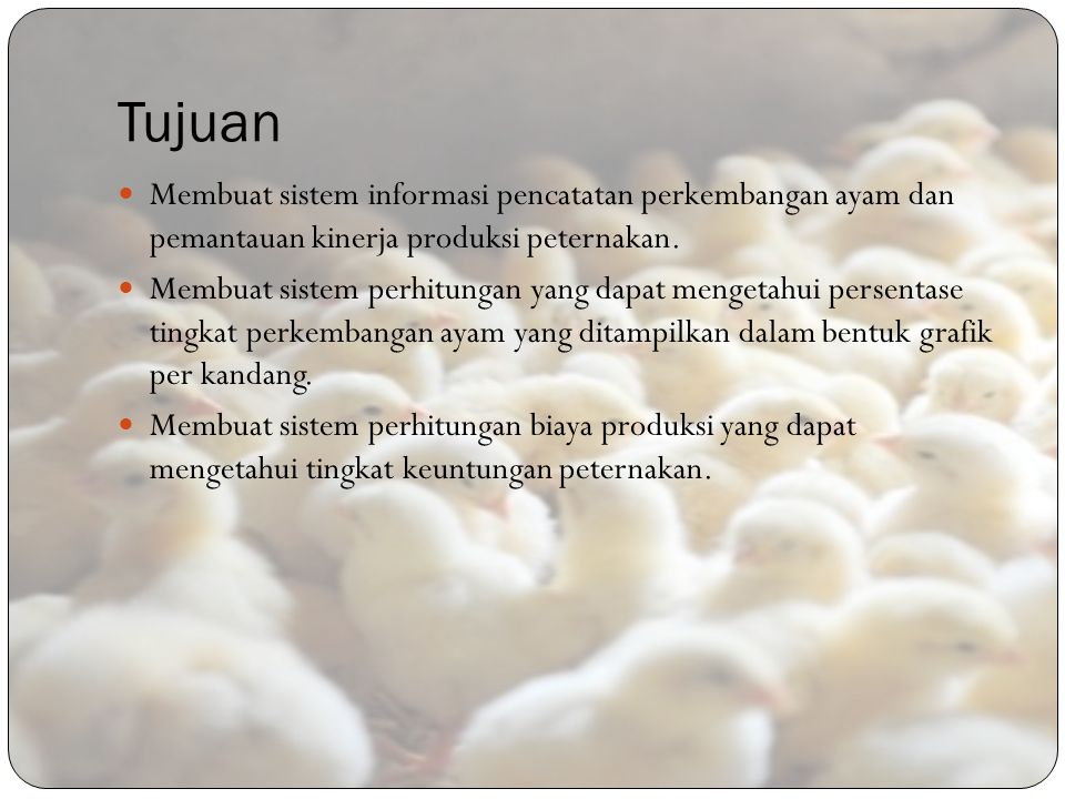 Tujuan Membuat sistem informasi pencatatan perkembangan ayam dan pemantauan kinerja produksi peternakan.