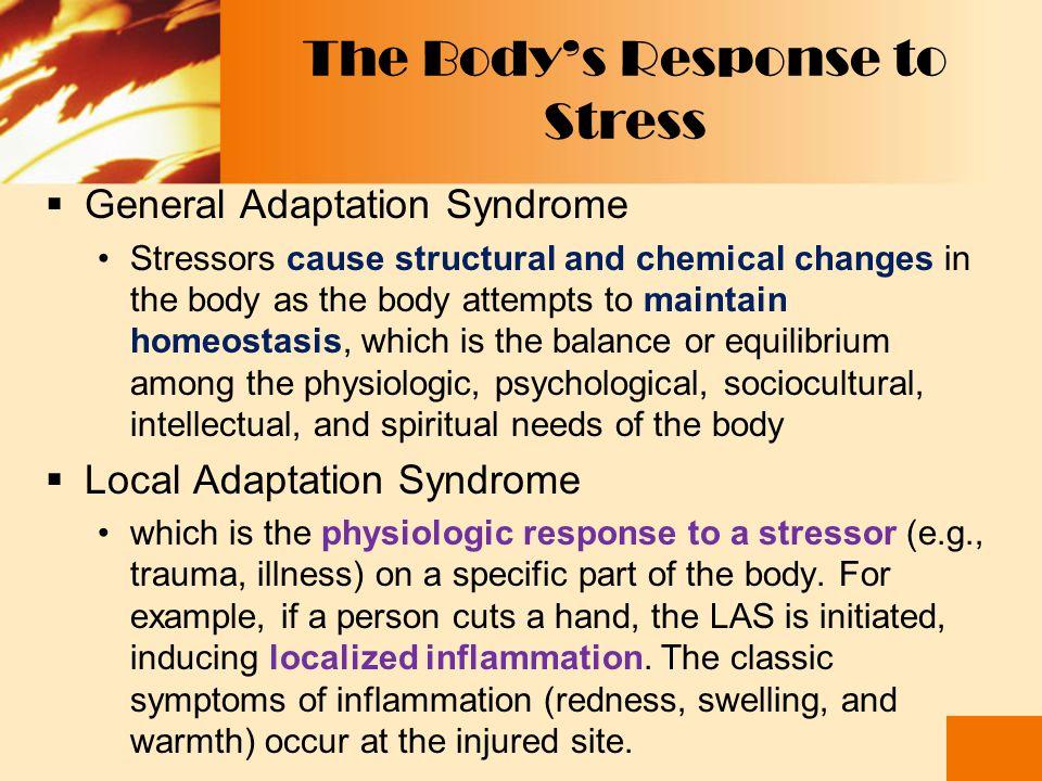 The Body's Response to Stress