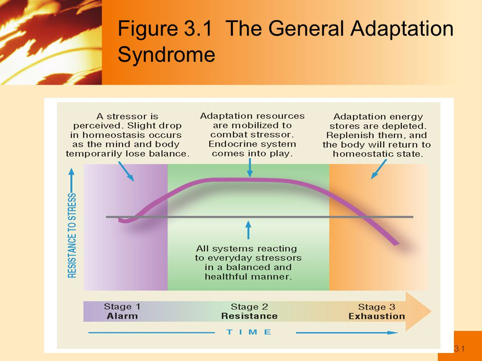 Figure 3.1 The General Adaptation Syndrome