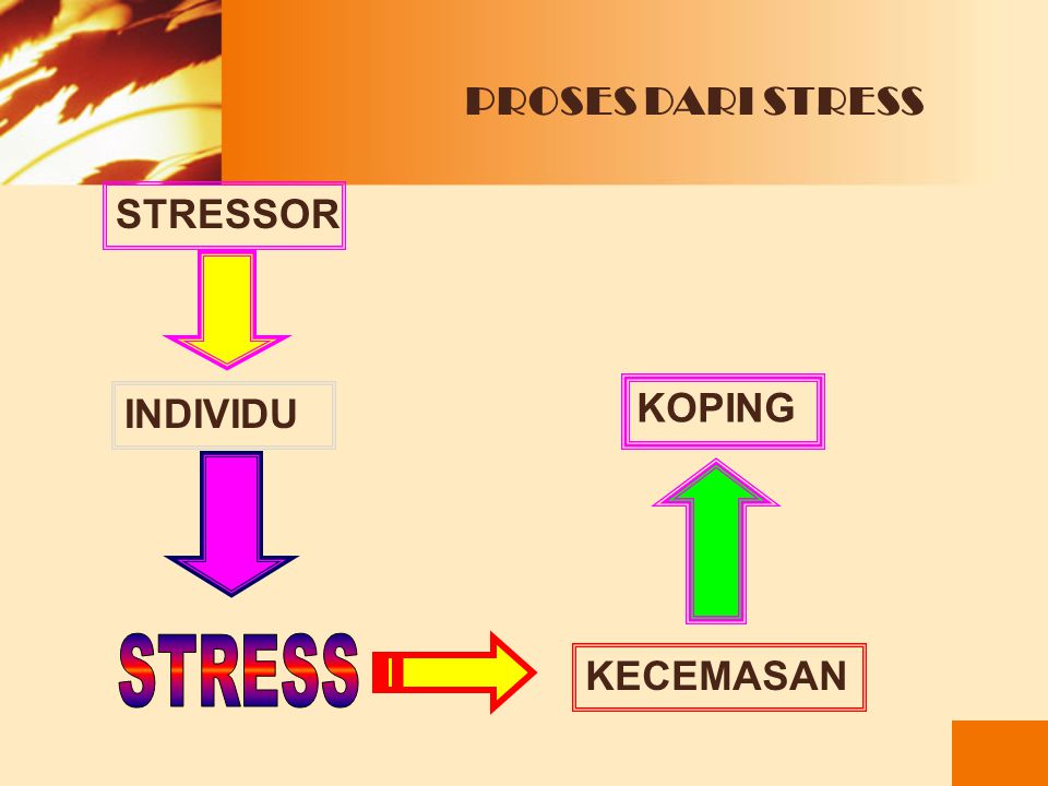 PROSES DARI STRESS STRESSOR INDIVIDU KOPING STRESS KECEMASAN