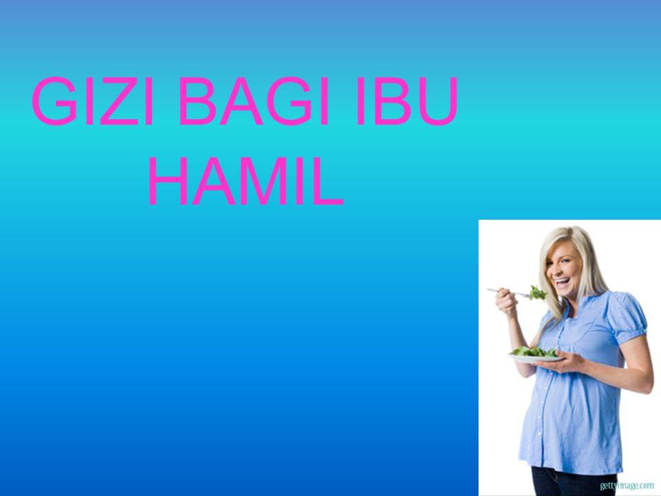GIZI BAGI IBU HAMIL