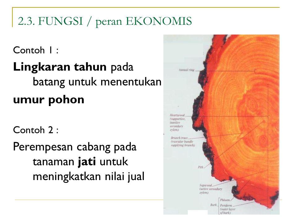 2.3. FUNGSI / peran EKONOMIS