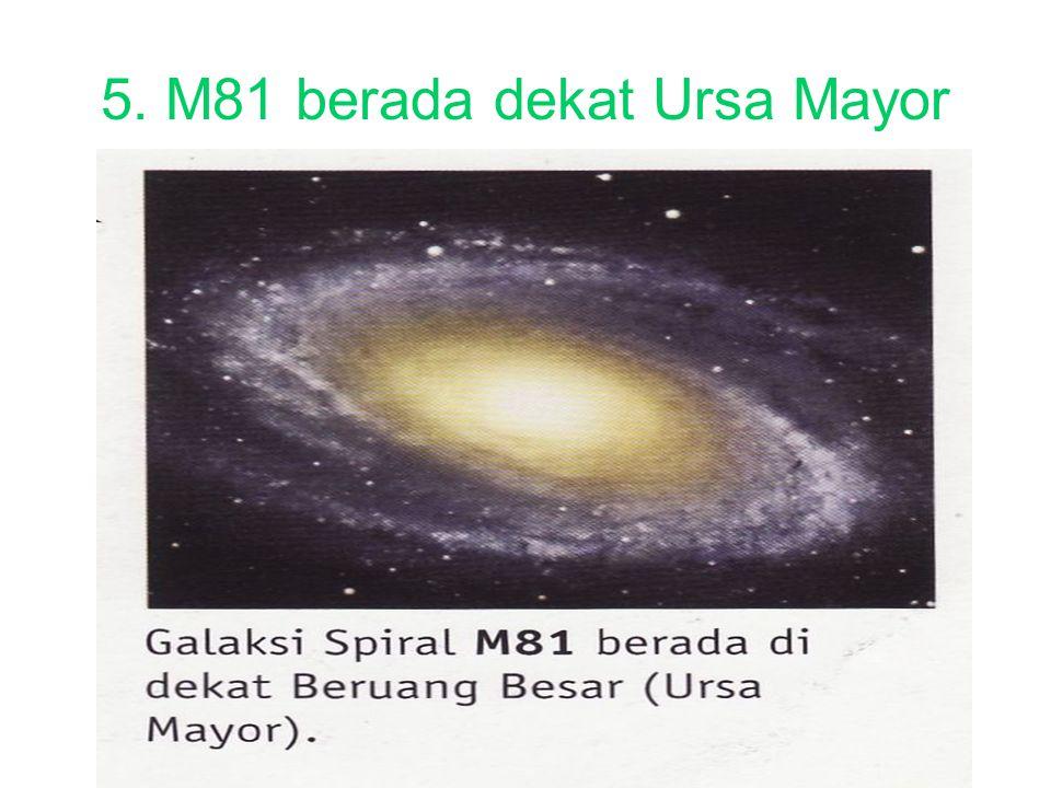 5. M81 berada dekat Ursa Mayor