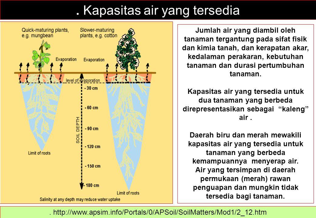 . Kapasitas air yang tersedia