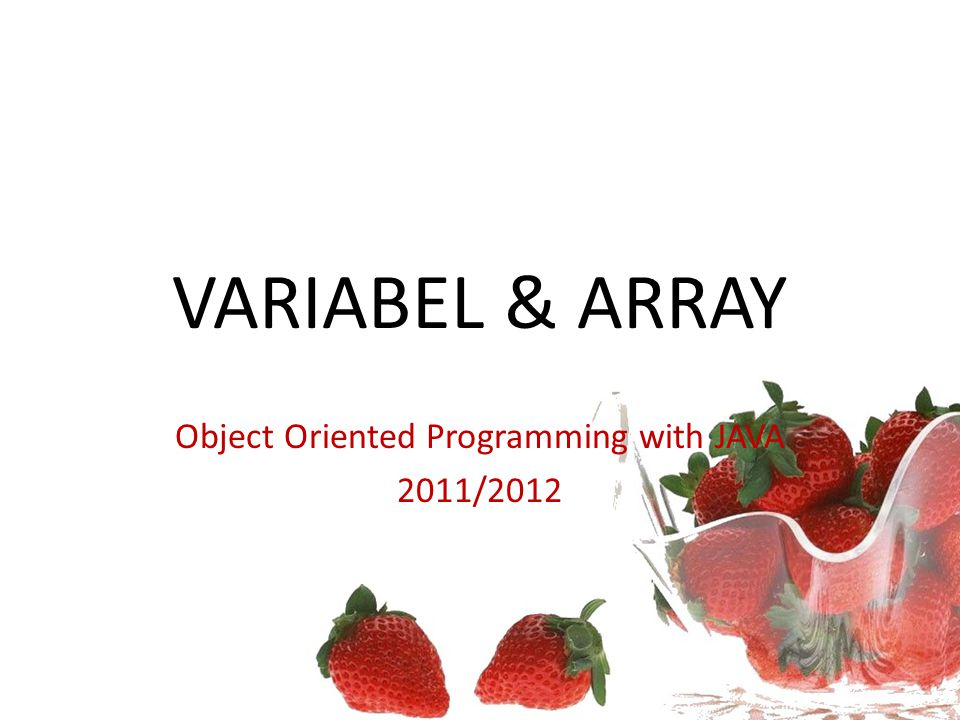 Object Oriented Programming with JAVA 2011/2012