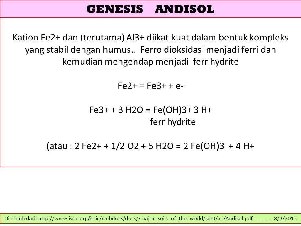(atau : 2 Fe2+ + 1/2 O2 + 5 H2O = 2 Fe(OH)3 + 4 H+