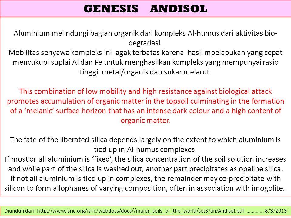 GENESIS ANDISOL Aluminium melindungi bagian organik dari kompleks Al-humus dari aktivitas bio-degradasi.