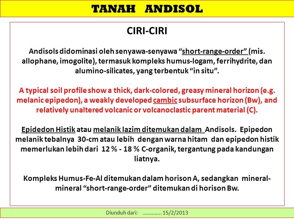 TANAH ANDISOL CIRI-CIRI