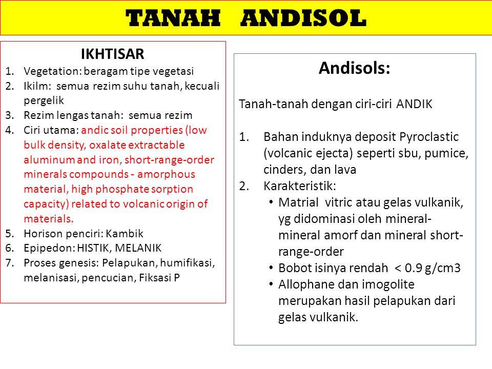 TANAH ANDISOL Andisols: IKHTISAR Tanah-tanah dengan ciri-ciri ANDIK