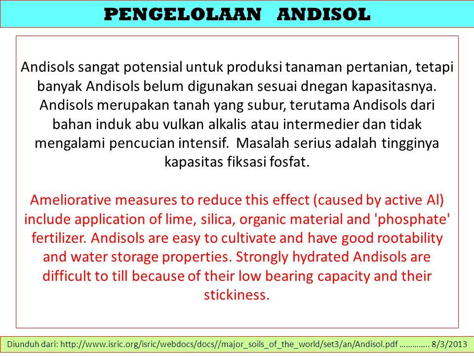 PENGELOLAAN ANDISOL Andisols sangat potensial untuk produksi tanaman pertanian, tetapi banyak Andisols belum digunakan sesuai dnegan kapasitasnya.