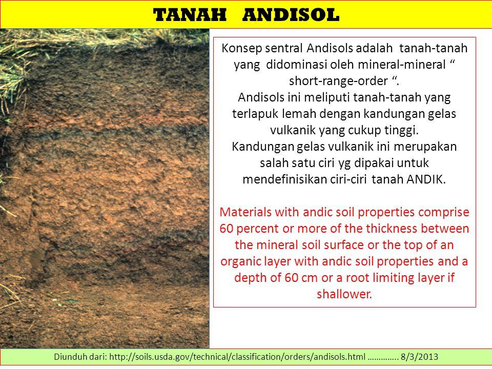 TANAH ANDISOL Konsep sentral Andisols adalah tanah-tanah yang didominasi oleh mineral-mineral short-range-order .
